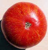 Семена томатов. 330 сортов
