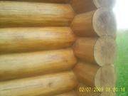 Рубка срубиков из леса заказчика